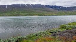 Islande à vélo 2014, route de Akureyri