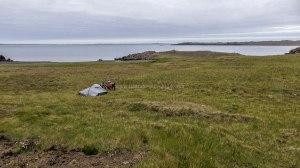 Islande à vélo 2014, bivouac en Islande