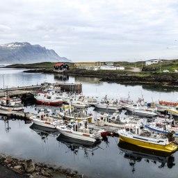 Islande à vélo 2014, Djupivogur en Islande