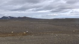 Islande à vélo 2014, route numéro 1 sur les hauts plateaux