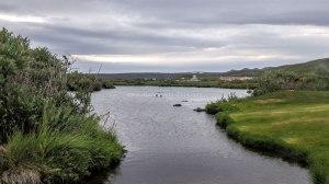 Islande à vélo 2014, le lac de Myvatn