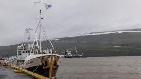 Islande à vélo 2014, port de Akureyri