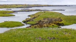 Islande à vélo 2014 sur une aire de repos durant les derniers kilométres en direction de Kelfavik