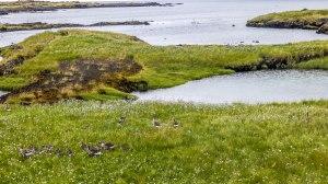Islande à vélo 2014, deriners kilométres en direction de Kelfavik