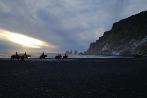 Chevaux sur la plage de Vik, en Islande à vélo en hiver
